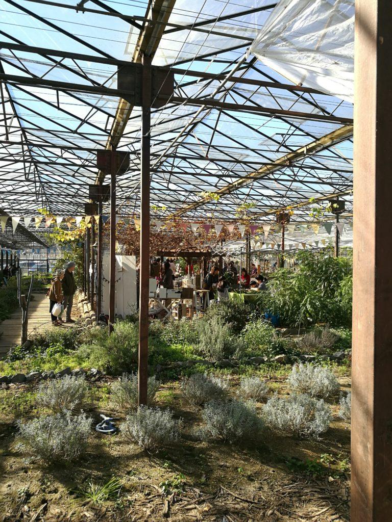 ハーブ園温室