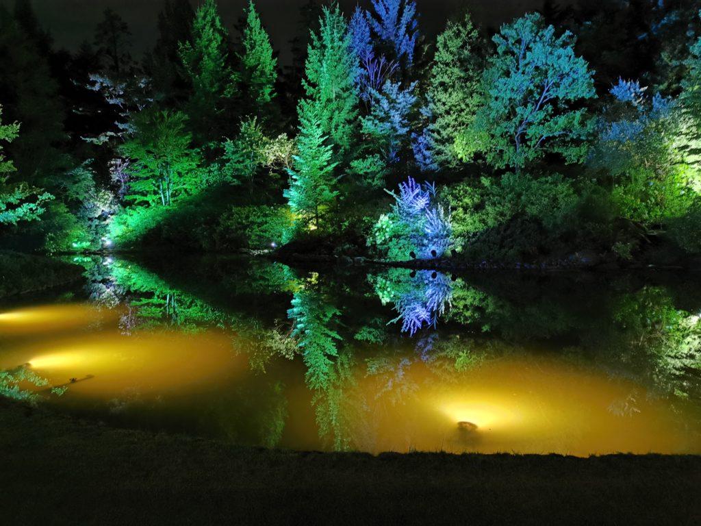 ライトアップの池