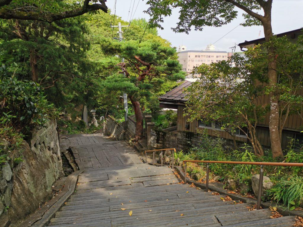 木々の中の階段