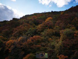 紅葉する山々