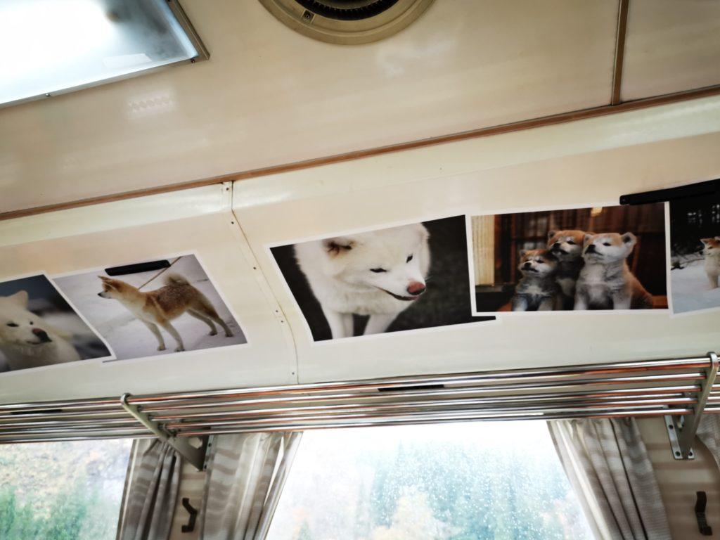 犬っこ列車の車内