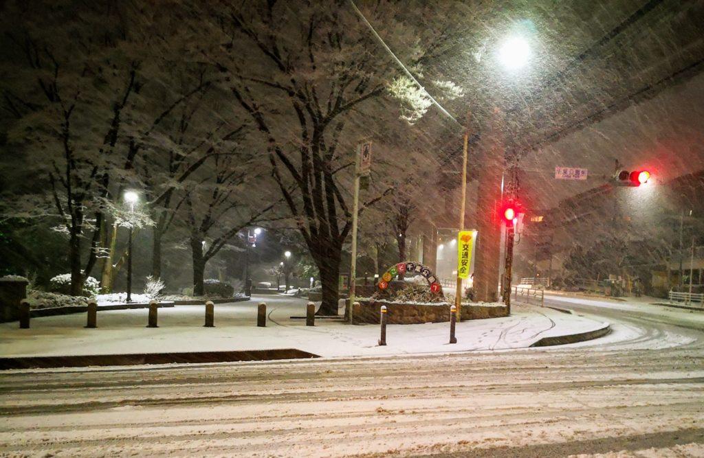 雪の千葉公園