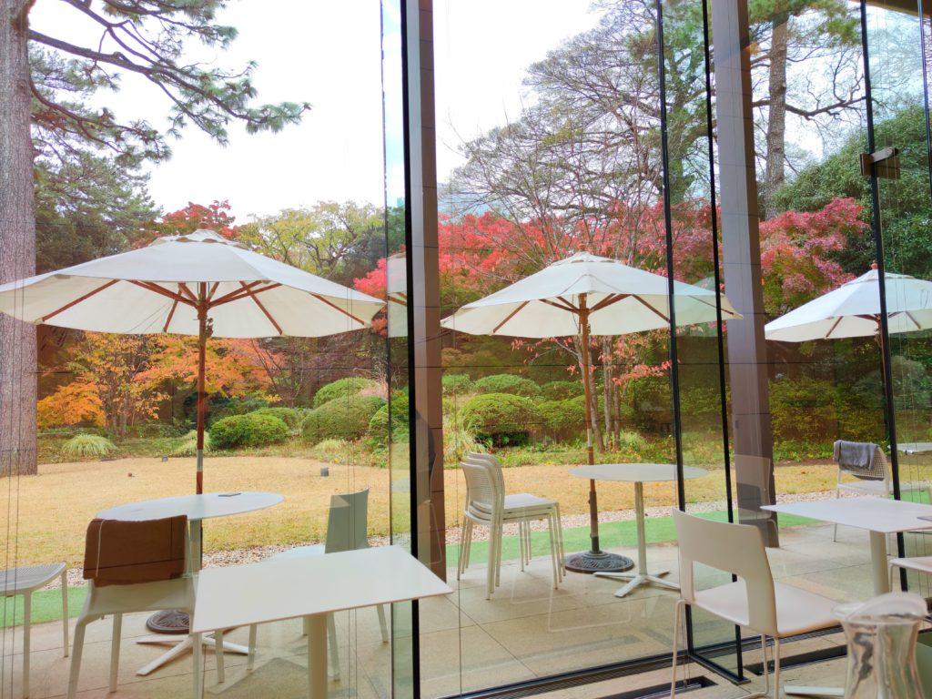 カフェから見える庭園