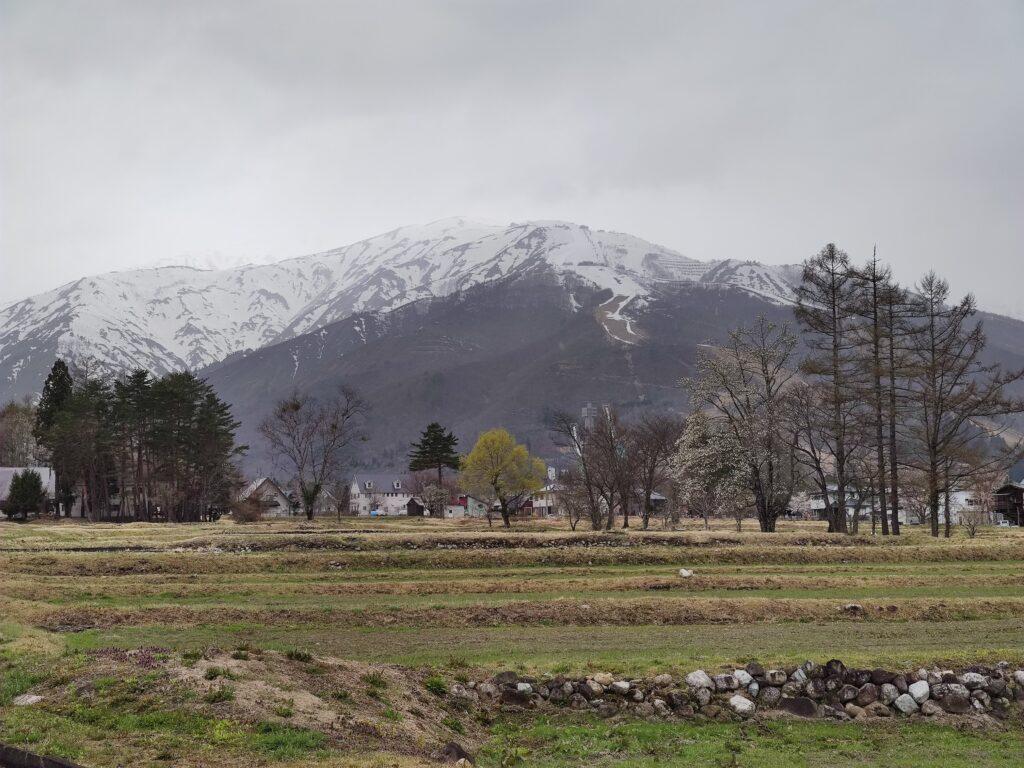 白馬村の山々