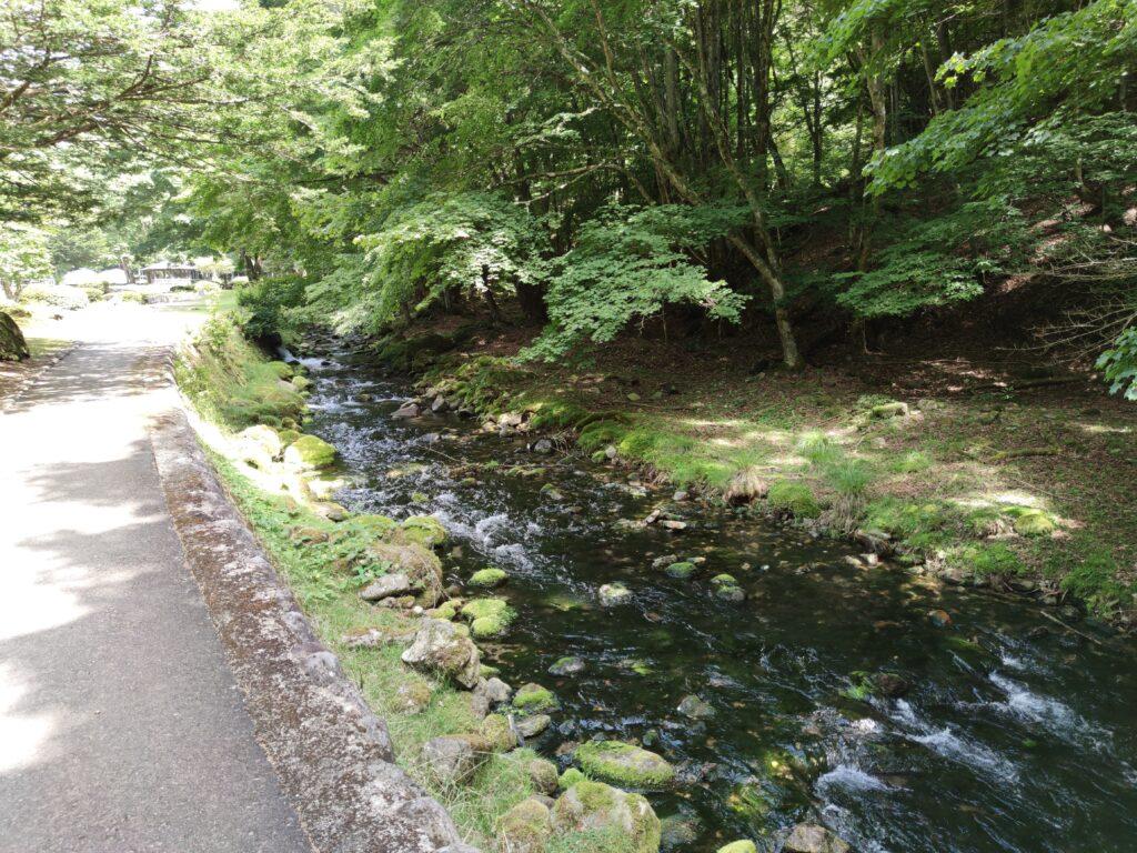 遊歩道わきの川